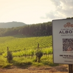 Castello di Albola - Radio Bottiglia
