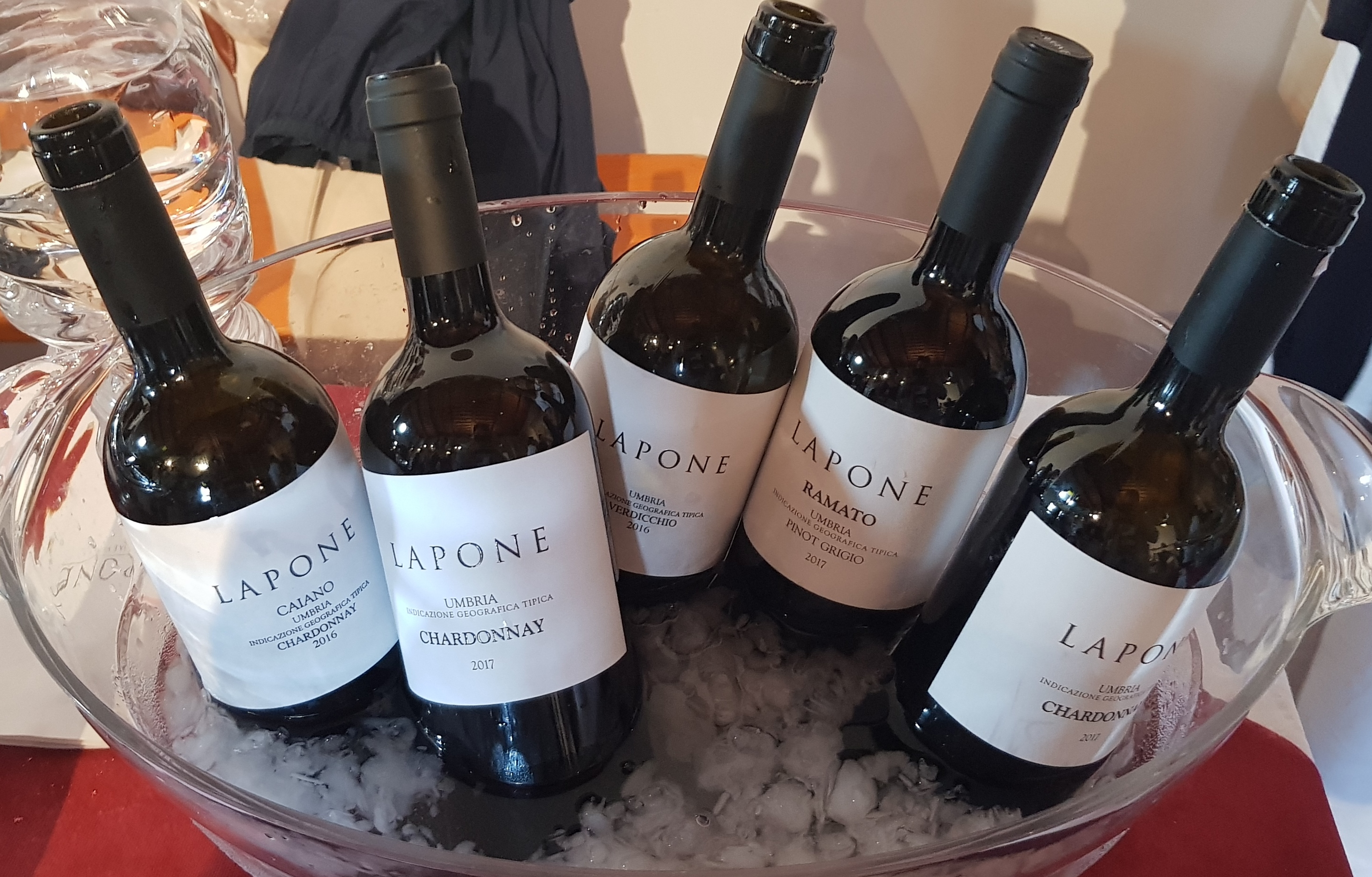 Lapone Wine Shoe