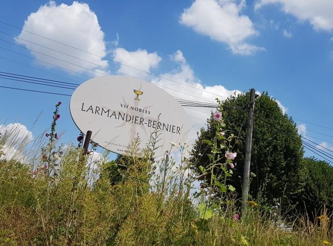Larmandier-1-677x500.jpg