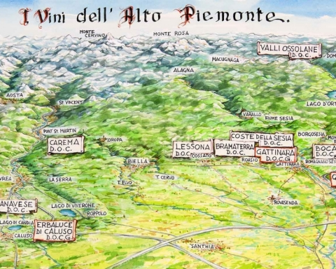 I vini dell'Alto Piemonte - TASTE ALTO PIEMONTE 2019