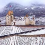 Neve nei vigneti in Svizzera, Aigle Castle