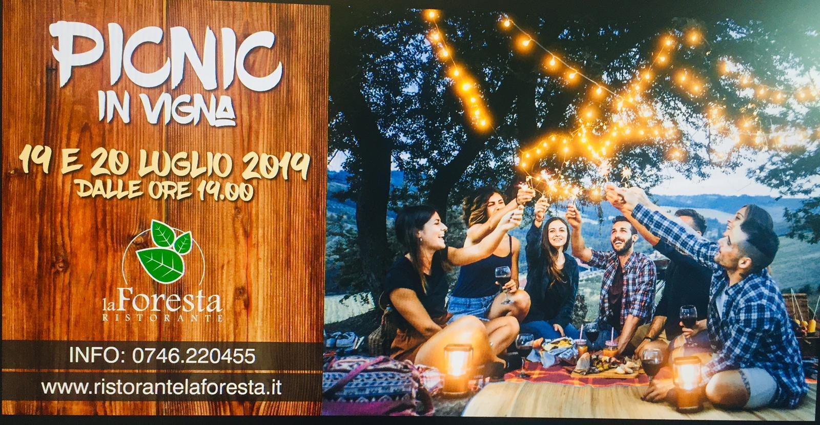 Cantina Le Macchie Picnic in Vigna 2019