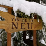 Vin de la Neu 2019