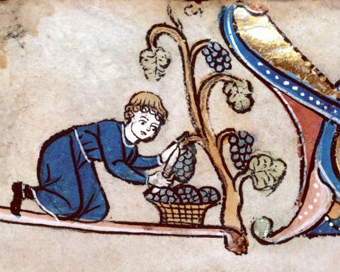 le bollicine di Franciacorta si facevano dal Medioevo