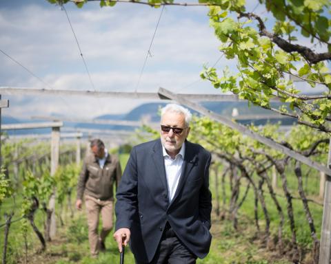 è morto Paolo Foradori, pioniere in Alto Adige dell'enologia